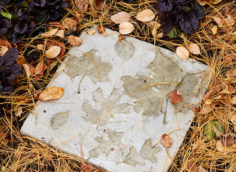 DIY Stepping stone in the garden:This leaf stepper project is a beautiful accent to your patio or path.
