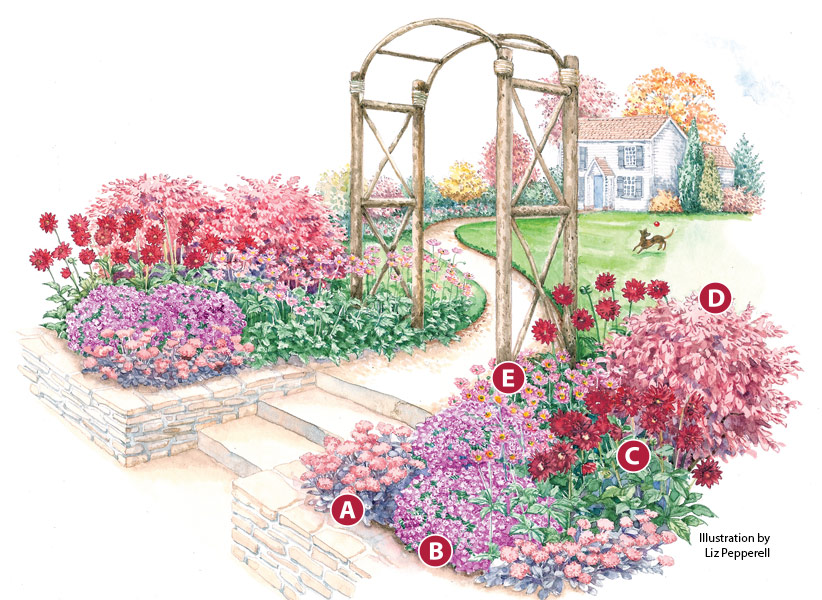 fall-flowers-garden-plan-letteredR2