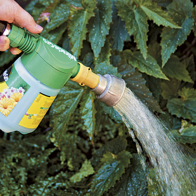 spraying water soluable fertilizer: A hose-end sprayer is great for spraying water-soluble fertilizer in large areas.