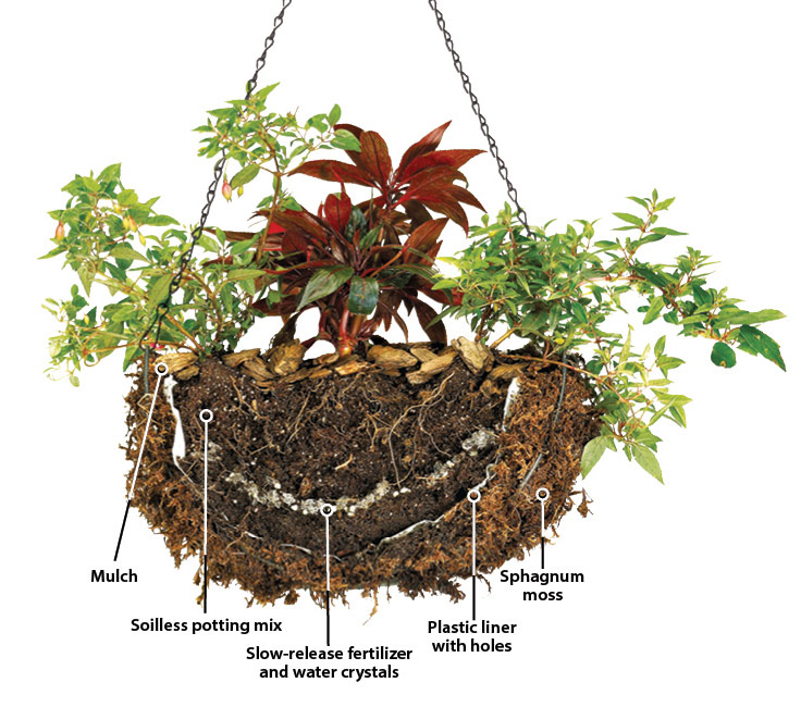 pj-how-to-plant-hanging-basket-diagram2