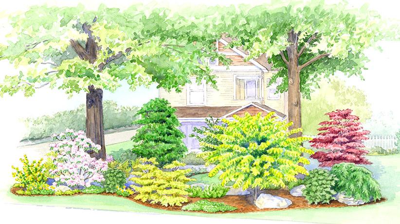 Garden Under A Big Tree Garden Gate
