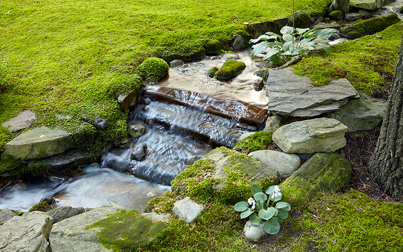 Moss-garden-water-feature2