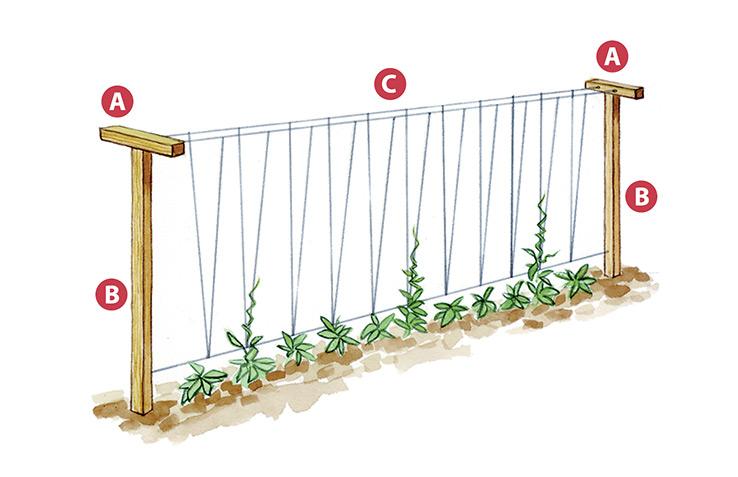 4 Diy Vegetable Garden Trellises Garden Gate