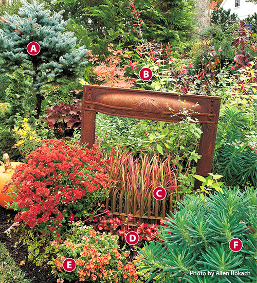 "Fall-ornamental-grass-garden-design-ideas-zinnia-Japanese-blood-grass-sage: The Japanese blood grass ""flames"" are perfect inside this old fireplace frame."