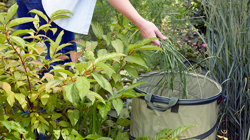 Garden-gate-staff-favorite-products-collapsible-garden-bin-pv: This compact and versitile Kangaroo Collapsible Garden Bag by Fiskars became a favorite for one of our staff members after ordering one to use in a photo shoot.