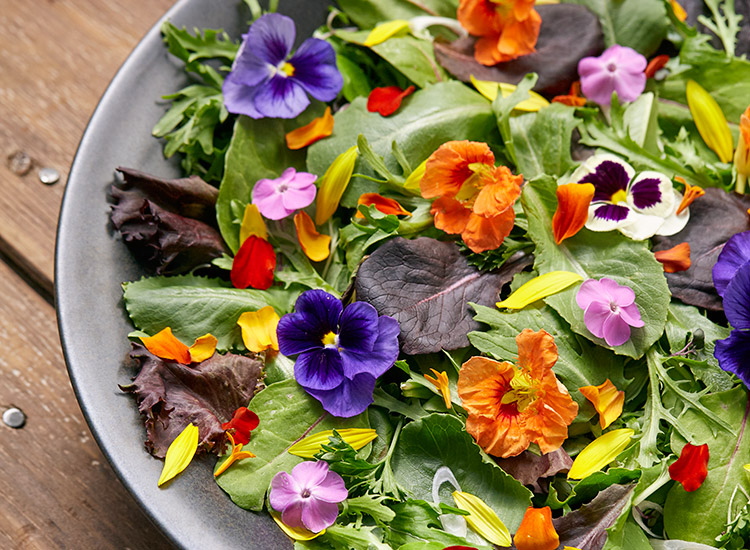 Beautiful salad with edible flowers: Edible flowers like the phlox, nasturtium, pansies and marigold petals are a beautiful addition to a simple salad.