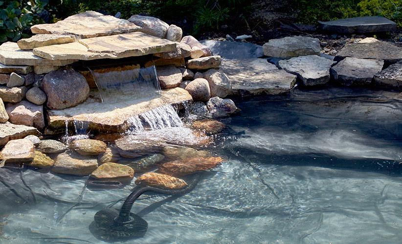 Ht Dwp Pond Rehab Plantingshelf