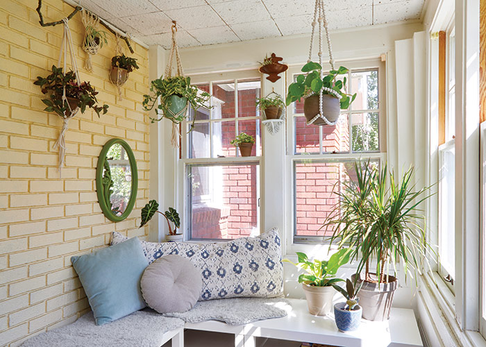 Decorating with houseplants in a sunroom: This sun room has areas of direct sunlight in front of the east-facing windows on the right and dims to medium light near the brick wall.
