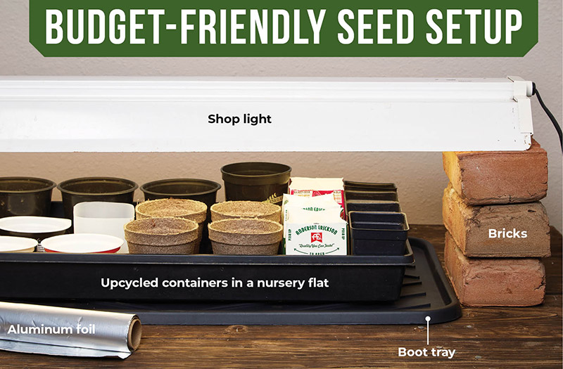 Budget-friendly affordable seed starting setup:Save money on your seed-starting setup by upcycling and using items you might already have around your home.