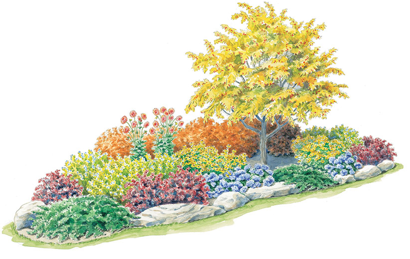 Brilliant-in-fall-garden-plan-Lead: Position the tree towards one end of this kidney shaped bed so its height will visually balance the rest of the planting.