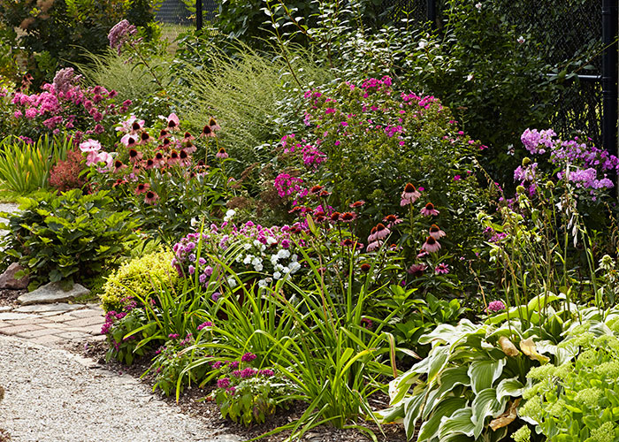 summer-garden-checklist-lead: Keep your beds and borders looking great this season with our summer garden checklist.