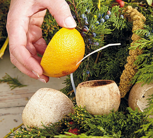 bird-feeding-wreath-oranges step4: Plastic cable ties make attaching oranges to your wreath quick & easy.