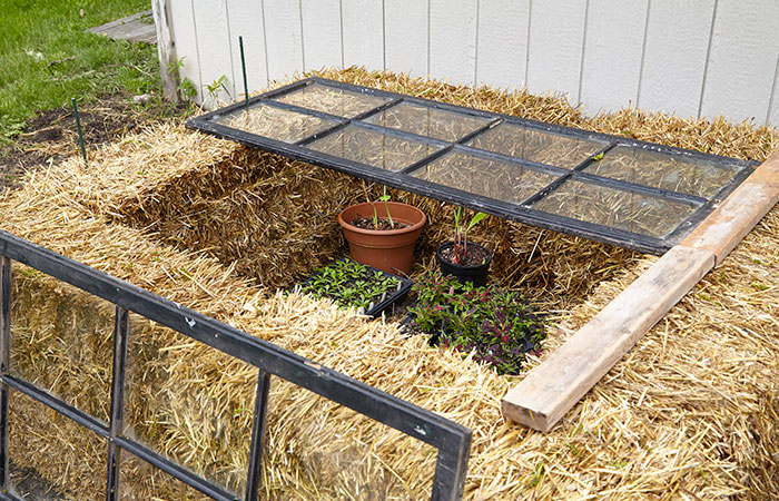 diy-cold-frames-vent: Remove one window during the day so plants get used to wind and weather.