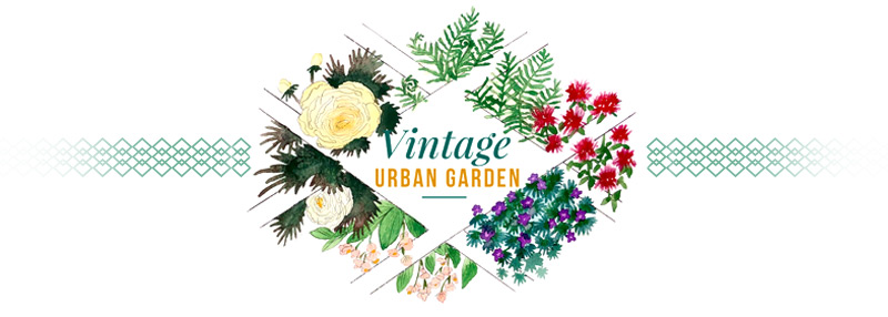 Vintage Urban garden logo and pin line