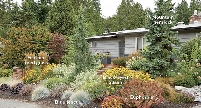 multi-season-interest-front-yard: Mix up plant shapes - upright, mounding, draping - for a dynamic look.