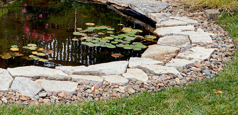 ht-dwp-pond-rehab-Edging2