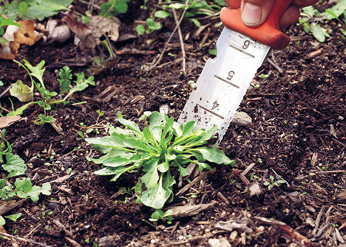 summer-garden-checklist-pull-weedsl: When pulling weeds, don't leave roots behind. If you yank only the leaves, weeds will grow back.