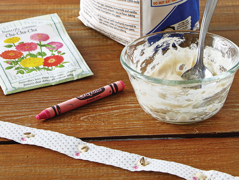ht-ss-successfully-start-seeds-1: DIY seed tapes are a great way to making spring planting easier.