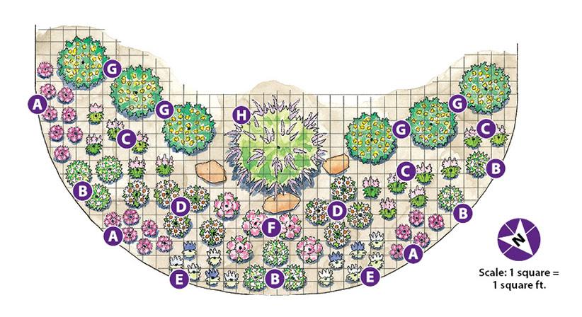 Deer-resistant garden bed | Garden Gate