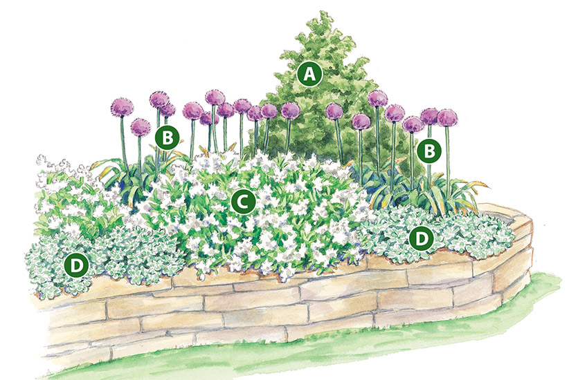 spring-bulb-garden-design-lettered-garden-plan: This low-maintenance garden bed makes for a perfect spring planting.