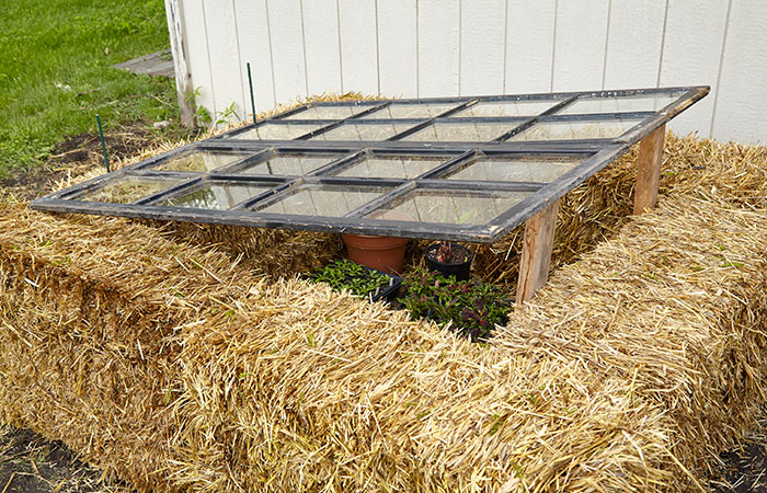 diy-cold-frames-raise-frame: Prop open the windows a few inches to acclimate plants to the weather and also prevent them from getting too warm on sunny days.