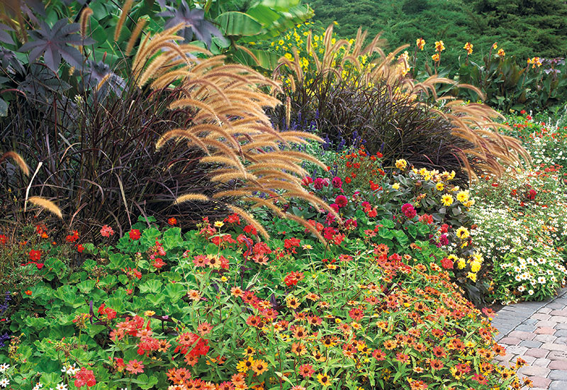 Plants To Pair With Ornamental Grasses For A Stunning Fall Garden