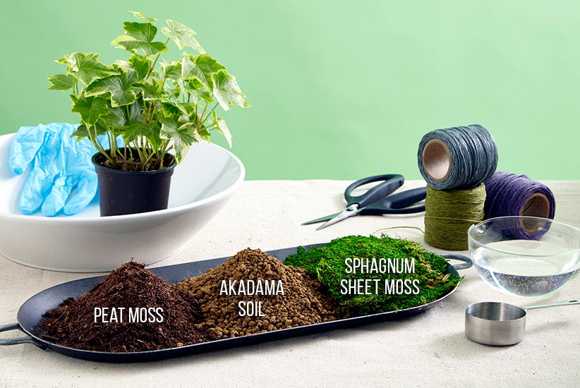 how-to-make-kokedama-materials