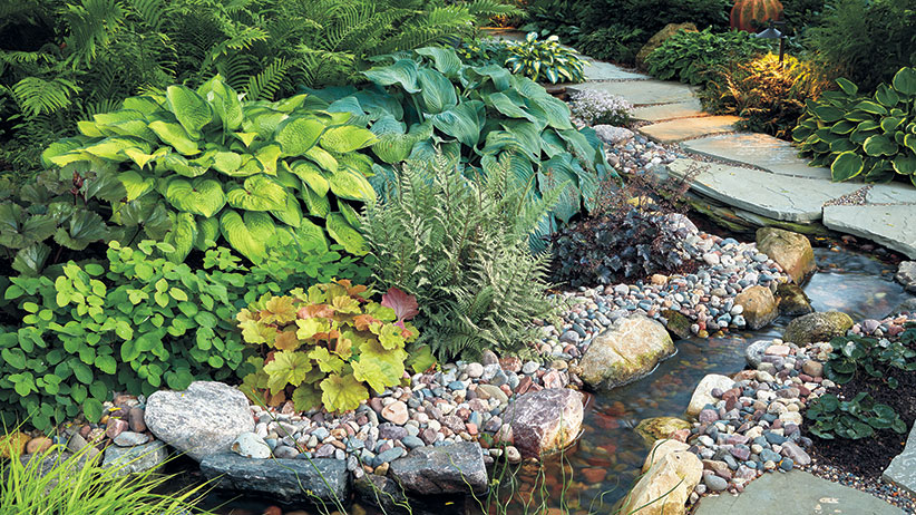 2 Shade Garden Combos For Hosta Lovers Garden Gate