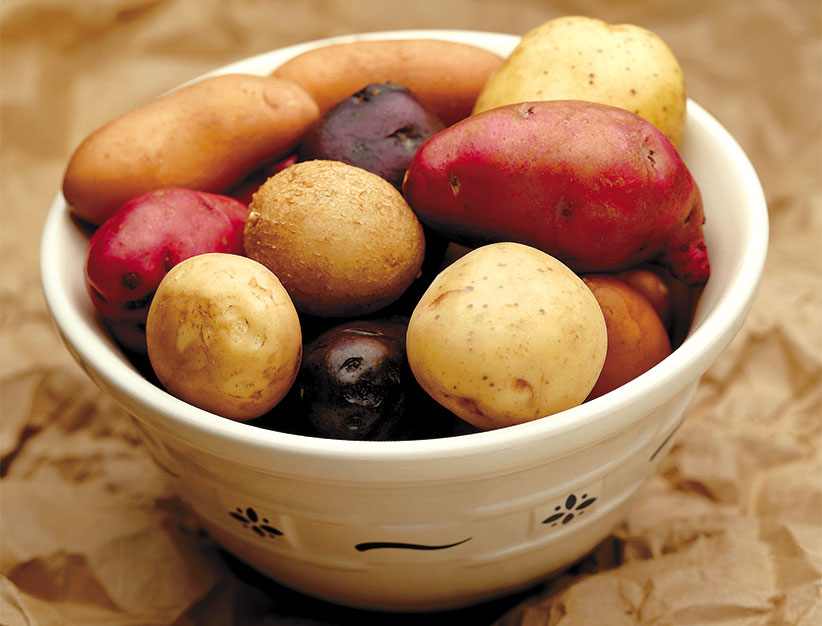 How To Grow Potatoes You Can Harvest From Summer To Fall Garden Gate