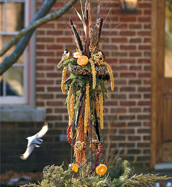 Bird-feeding obelisk in fall: Offer a variety of food, like these different seedheads and fruits, to appeal to a wide range of birds. This will give you the best show and birds their choice of energy sources.