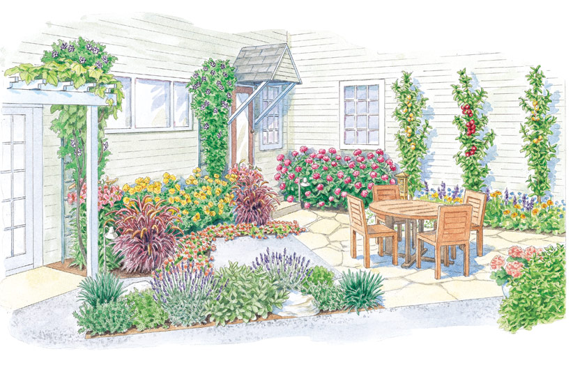 Patio Garden Design Illustration: Illustration by Carlie Hamilton
