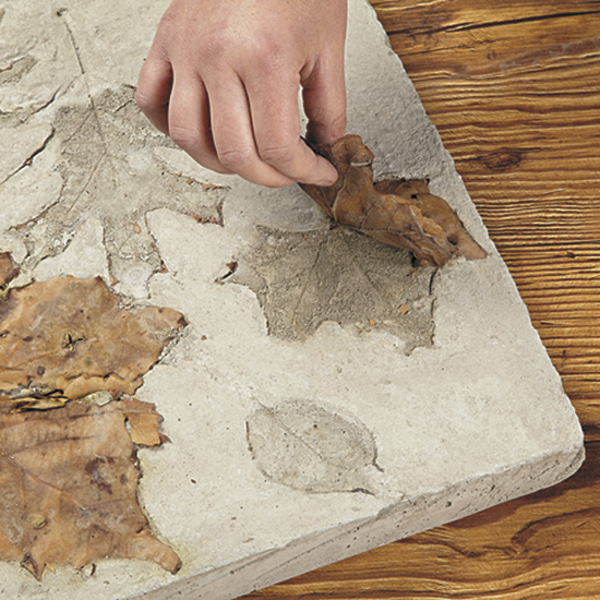 Remove concrete stepper from form and take off leaves: Once the concrete has cured carefully turn it over and peel out the leaves.