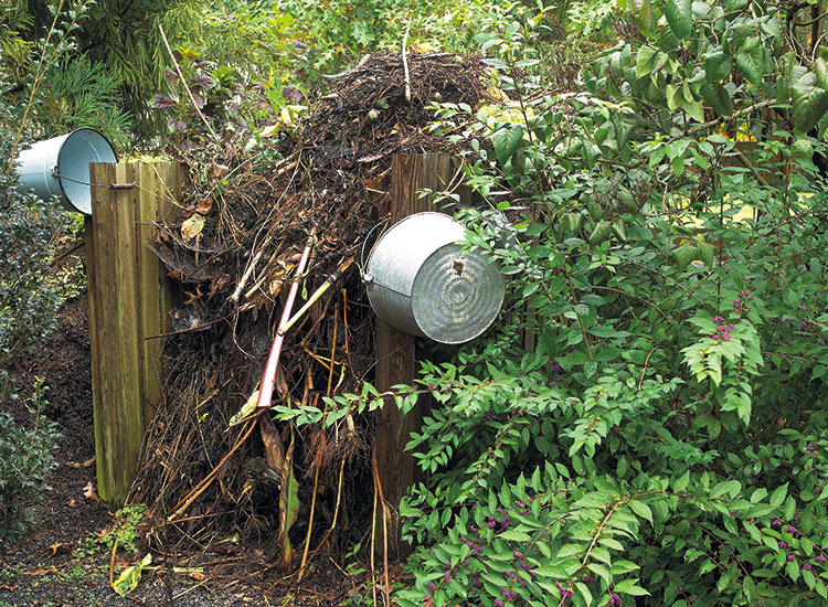 welcome-birds-to-your-garden-leave-garden-debris-to-attract-bugs-and-birds:  A pile of garden debris is the perfect spot for a gray catbird to look for beetles, pillbugs or centipedes.