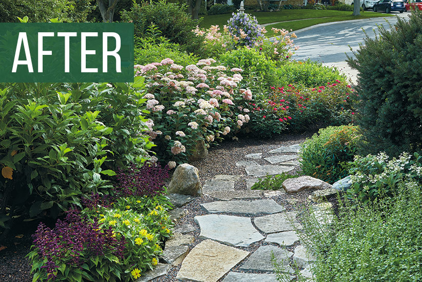 Sideyard-before-and-after: Now this sideyard is anything but boring with a beautiful flagstone pathway with low-maintenance shrubs and perennials.
