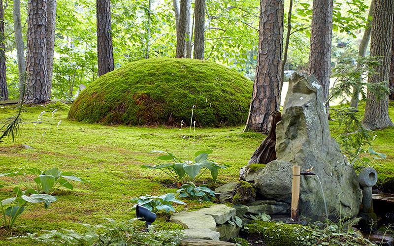 Marvelous Moss Garden Garden Gate