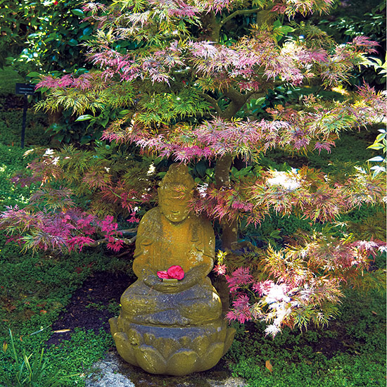 designing-with-japanese-maples-pair-with-an-ornament: A focal point like this will have more multiseason appeal if you prune your Japanese maple to emphasize an architectural branching structure.