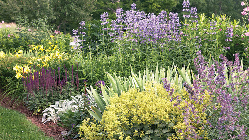Two Stunning Ideas For Your Summer Perennial Garden Bed Garden Gate
