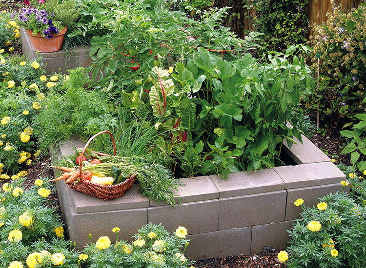 Raised garden bed made out of stacked cinder blocks: Stacked cinder block beds are a great DIY option.