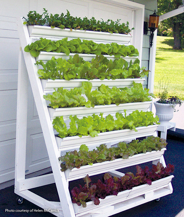 DIY-vertical-garden-for-greens: Vertical gardening is a great way to grow more produce in less space.