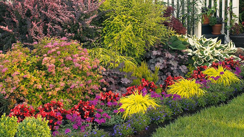 A garden of spring surprises | Garden Gate Magazine