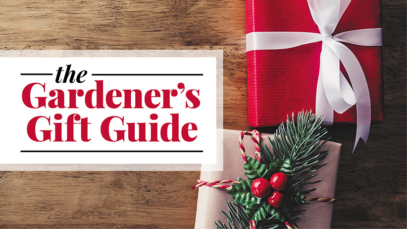 Holiday Garden Gift Guide pv