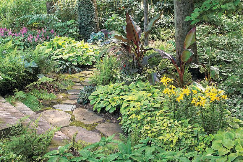 Create A Stunning Shade Garden Garden Gate