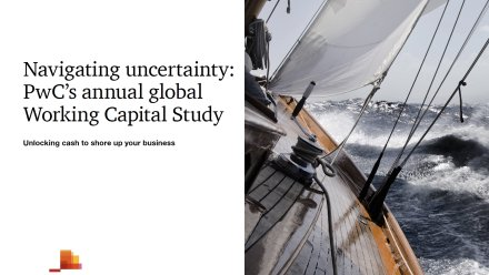 PwC Working Capital Study - preview image