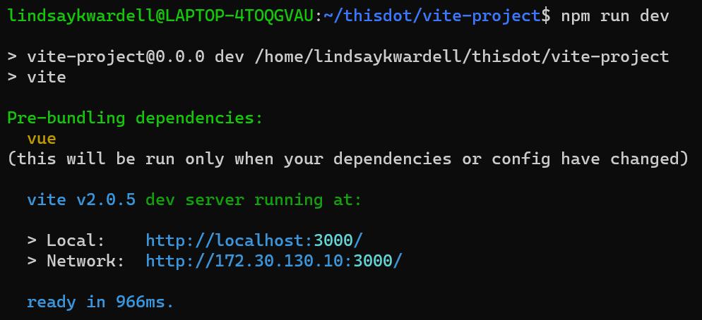 vite-project npm run dev
