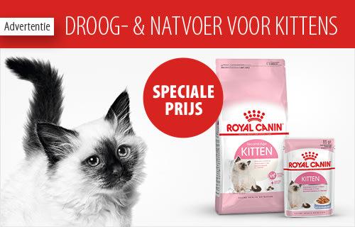 zooplus: Alles voor je huisdier | Online dierenwinkel