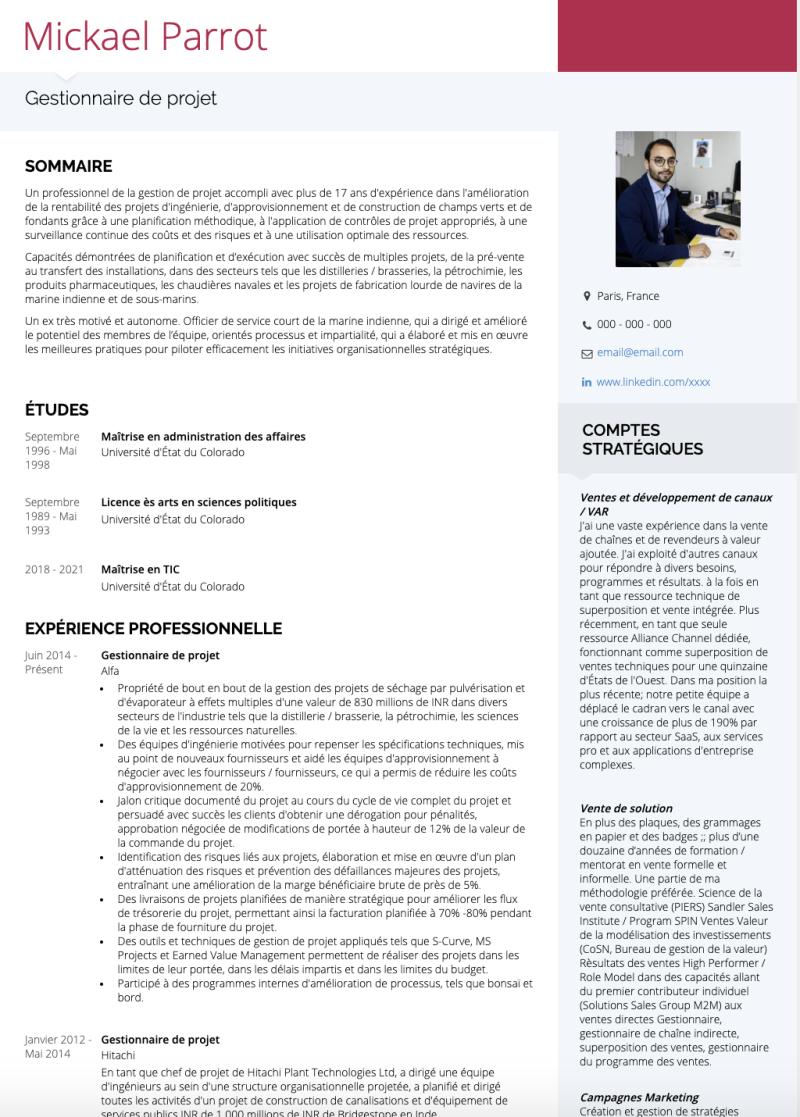 Exemples Gestionnaire De Projet De Cv Et Des échantillons De