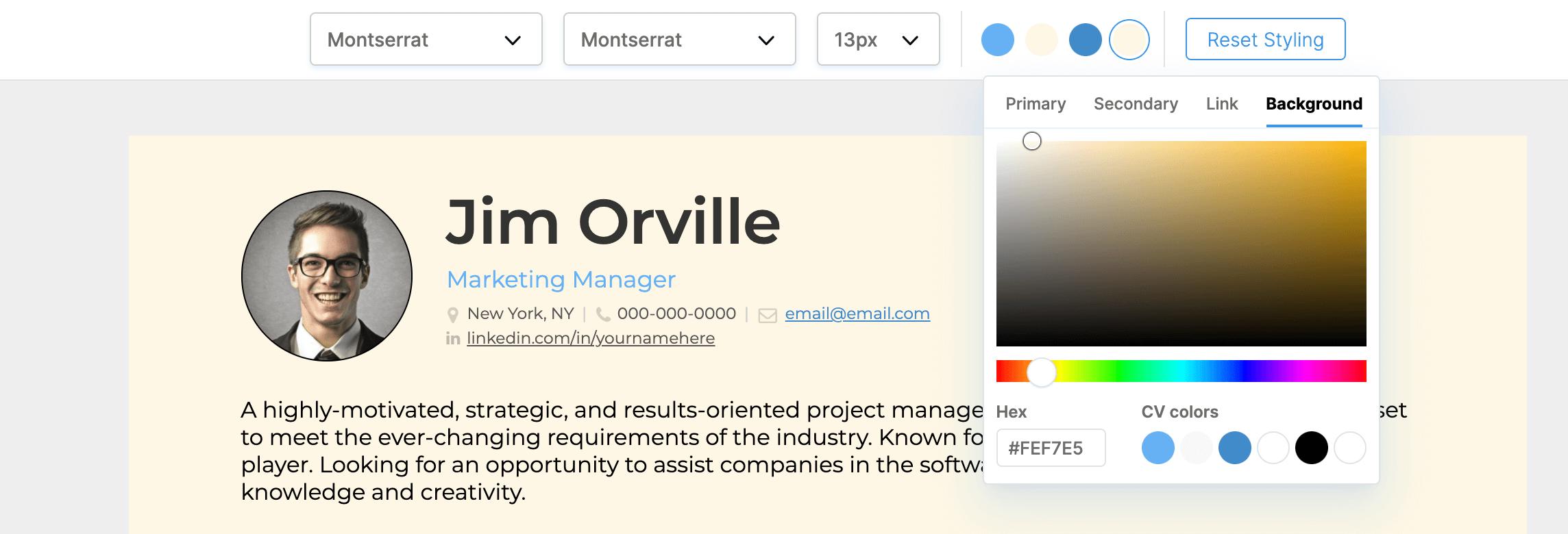 resume-basics-colour