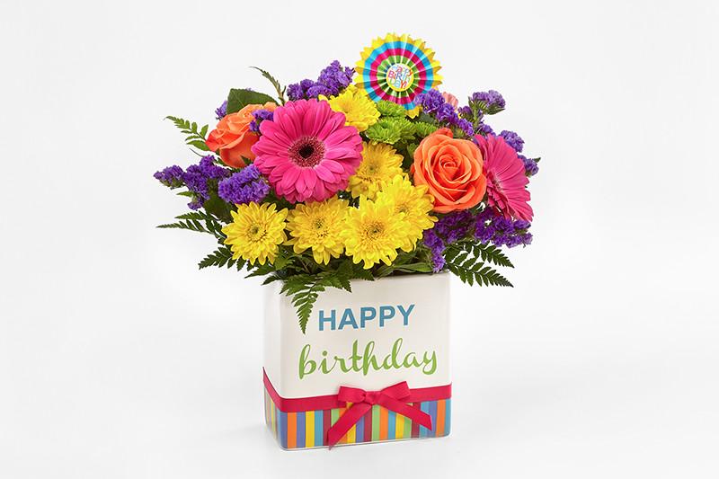 All Birthday