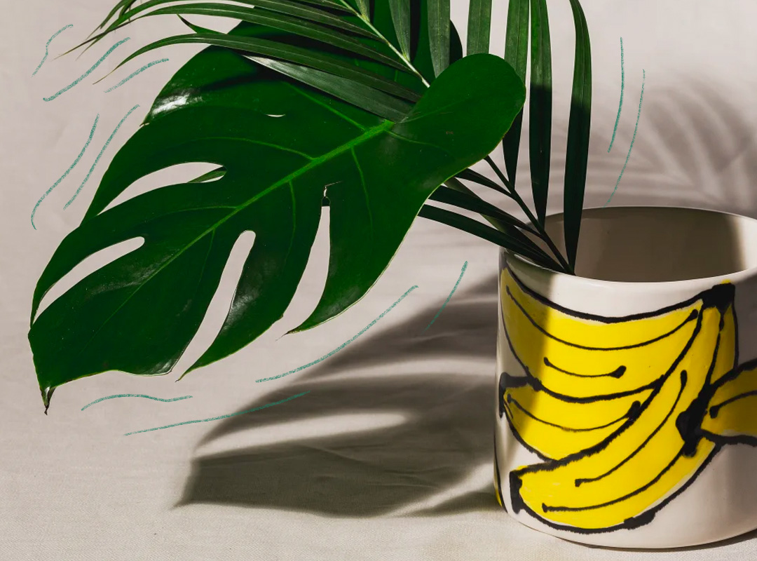 Planter with illustrated bananas on the sides