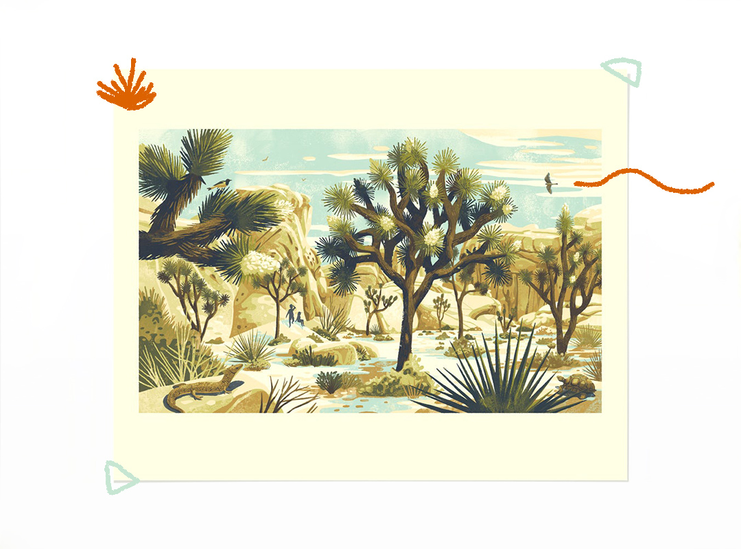 Stylized print featuring Joshua Tree National Park